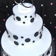 220x220 sq 1218241244368 weddingcake