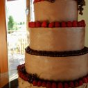 130x130_sq_1285604271210-chocolateweddingcakevineyard2