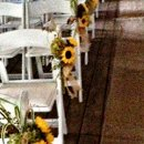 130x130 sq 1358905159227 sunflowersonchairsatyarrows