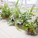 Aisles were lined with planters.  Floral Designer: Floral Kitchen
