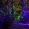 96x96 sq 1434482084747 blisslights move4a