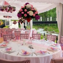 220x220 sq 1456929878081 pink delight outdoor reception