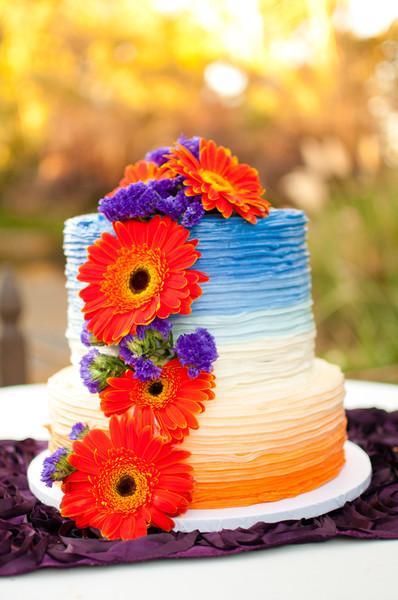 Hip Modern Blue Orange Buttercream California Fall Flowers Garden ...