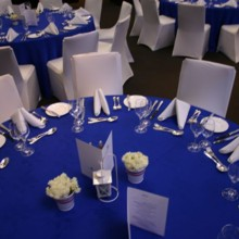 Promises Party Rentals Event Rentals Bronx Ny