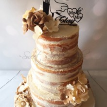 220x220 sq 1457365097800 rustic naked cake