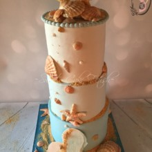 220x220 sq 1457365645363 seashell cake