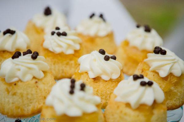 600x600 1517550252 bb56050353bc4ac0 1517550251 26bce7e3fd0e89a8 1517550250696 23 more cupcakes