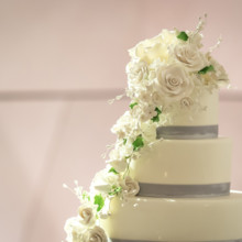 220x220 sq 1483996761318 wedding cake