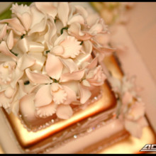 220x220 sq 1372345344872 wedding detail shots photography fort lauderdale 0007