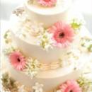 130x130 sq 1370032157993 gerig.hudson cake pink gerberas credit  bill cardoni