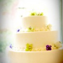 130x130 sq 1370032282823 wedding cake gree and purple boarder credit  david w. coulter