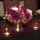 130x130 sq 1322674108615 thefrenchbouquetartworkstulsaphotography3flowers