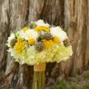 130x130 sq 1322674138099 thefrenchbouquetartworkstulsaphotography7flowers