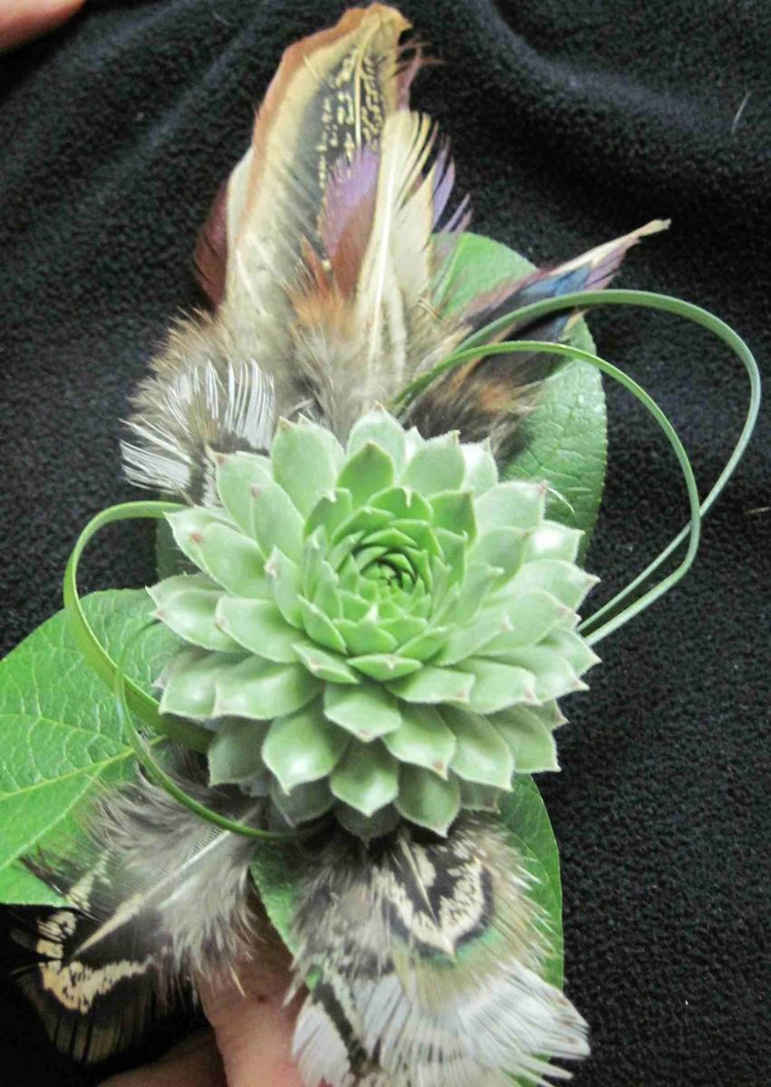 Tucson Wedding Florists Reviews For 23 Florists