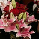 130x130 sq 1217751955289 lilies