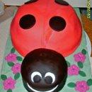 130x130_sq_1270177268643-ladybug001edited