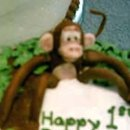 130x130 sq 1270177371581 1stbdaymonkeycloseupedited