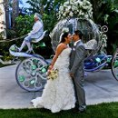 130x130 sq 1346262503898 disneylandfairytaleweddinghorsecarriage