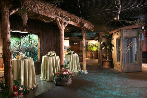 texas state aquarium corpus christi tx wedding venue