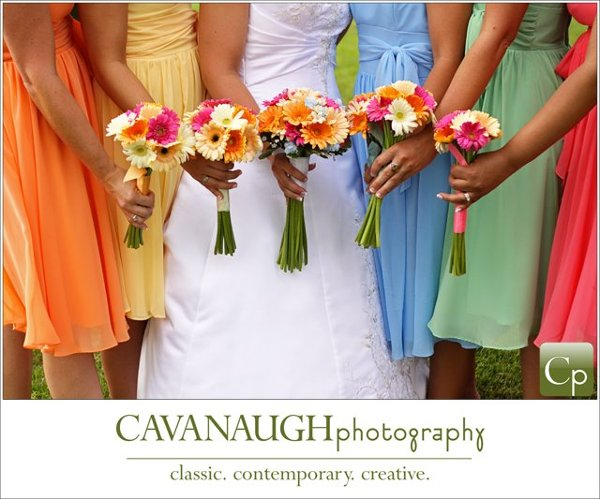 photo 38 of Cavanaugh Photography