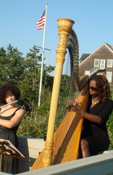 photo 5 of Harpist, Brandee Younger
