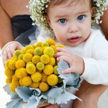 220x220 sq 1452709238042 baby with flowers