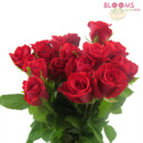 130x130 sq 1414514827178 sweet heart roses red