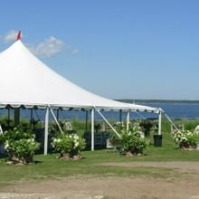 220x220 sq 1414161981679 gold stripe setup tent