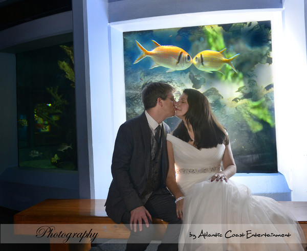 1506558995991 Wendyleigh3 Groton wedding dj