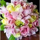 130x130 sq 1224000977259 pinkgreenrosecymclose