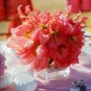 130x130 sq 1224001681509 coralglory