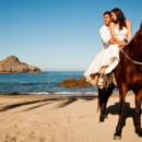 130x130 sq 1366230782292 elena aj horse