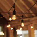 130x130 sq 1455136920112 600x6001365134796584 vintage string lights