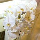 130x130 sq 1220980855218 bridesmaidbouquet