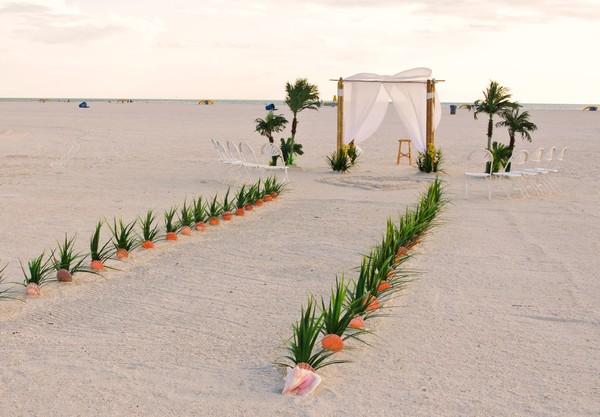 1372353281014 Ti Largo wedding officiant