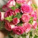 130x130 sq 1230043501033 rosebouquet
