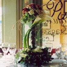 220x220 1263512407439 weddingwirelogo