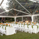130x130 sq 1387487748267 hermitage wedding photography2 2871228512