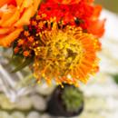 130x130 sq 1387488102504 hermitage wedding photography3 2871229324