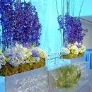 130x130 sq 1302112531134 floral1lrg14