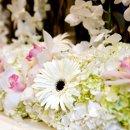 130x130 sq 1302122048197 floral2lrg14