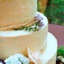 130x130_sq_1233957186390-cakeone