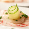 96x96 sq 1509661854472 horsd   crudo with cucumber   single