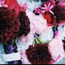 130x130 sq 1220323897076 pg1 bouquets
