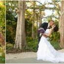 130x130 sq 1370456162050 natalie and chris  naples zoo wedding photographer  purple peacock feathers0018