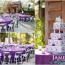 130x130 sq 1370456165787 natalie and chris  naples zoo wedding photographer  purple peacock feathers0019