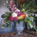130x130 sq 1236881337318 flora 2