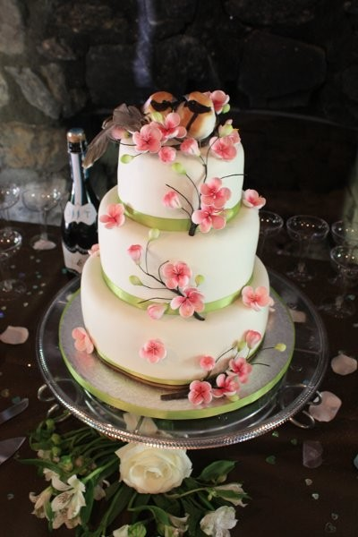 wedding cake denver simply cakes wedding cake johnstown co 22436