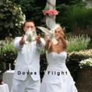 130x130_sq_1389842063210-doves-2011