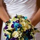 130x130_sq_1326391315776-bridesbkycopy